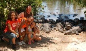 Gatorland Florida Aligator