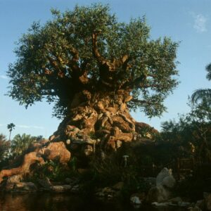Der Tree of Life in Disney's Animal Kingdom (Florida)