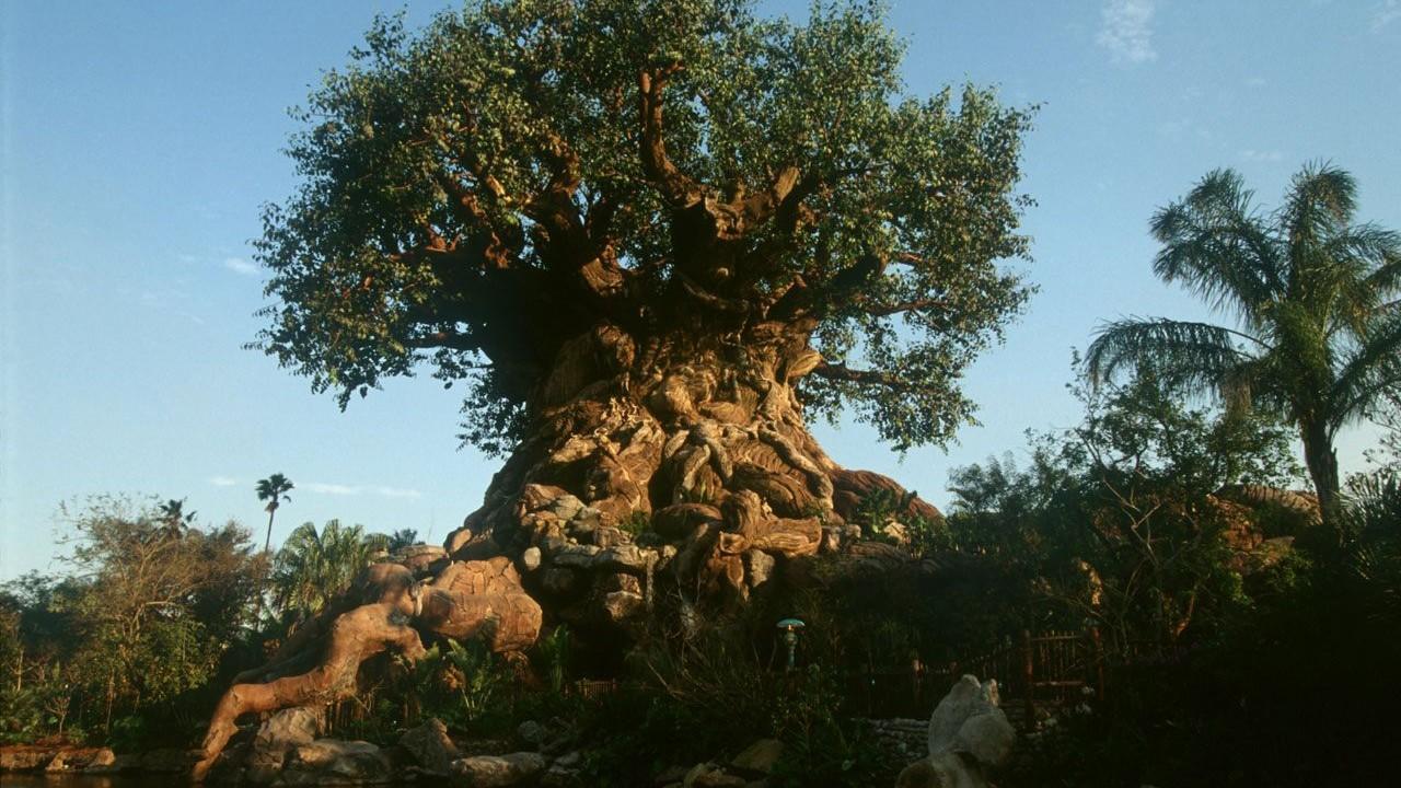 Der Tree of Life in Disney's Animal Kingdom (Florida)