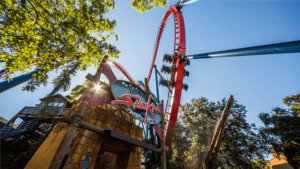 Busch Gardens Tampa: Sheikra - Welcher Freizeitpark für Achterbahnfans?