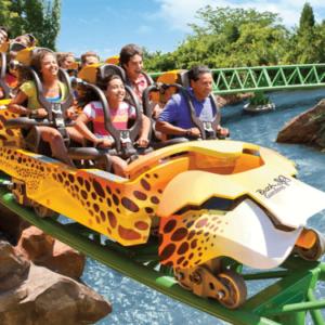 Busch Gardens Tampa Familie